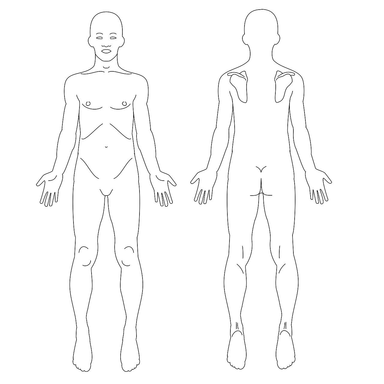 males-1859518_1280