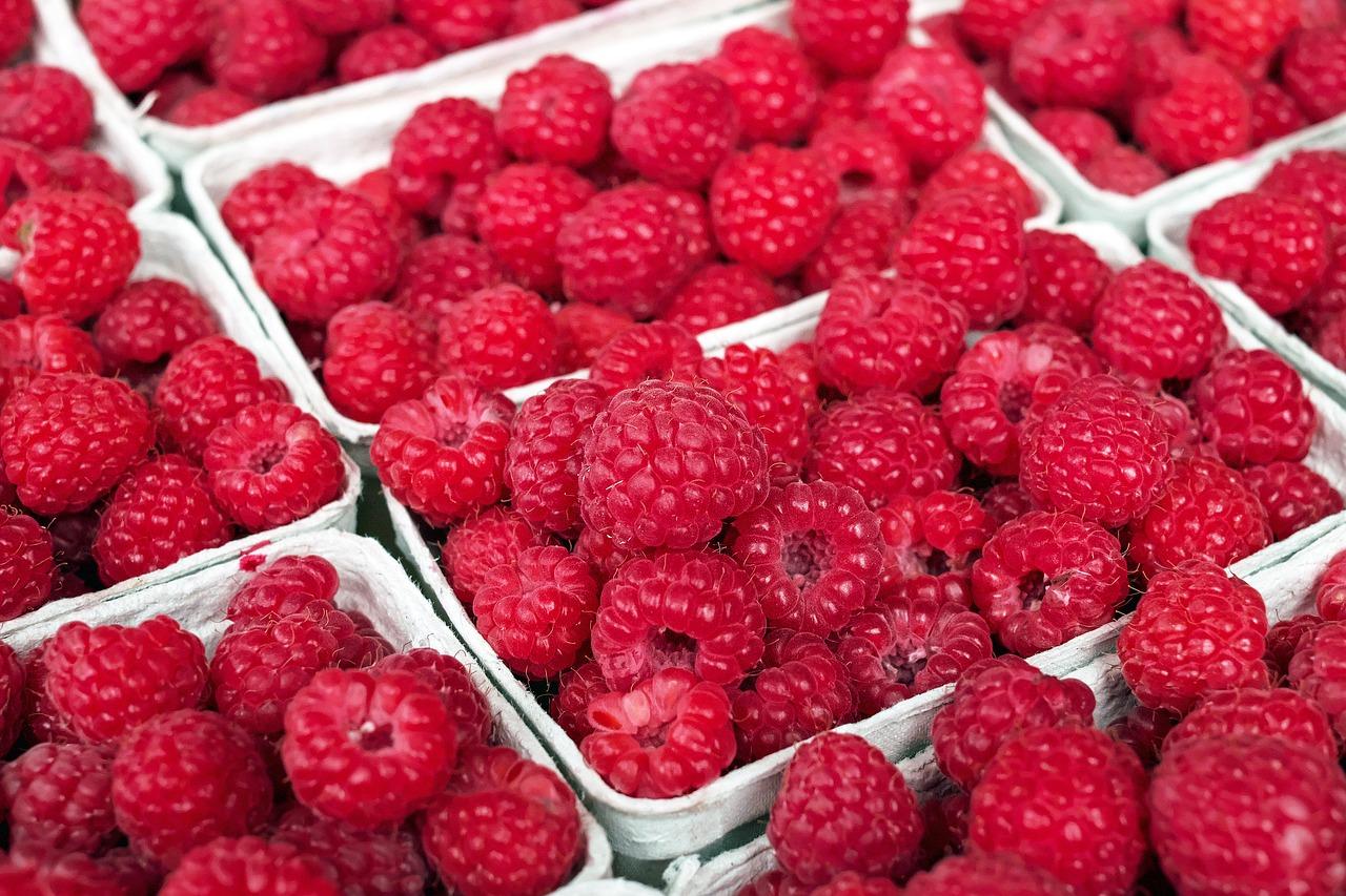 raspberry-1465988_1280