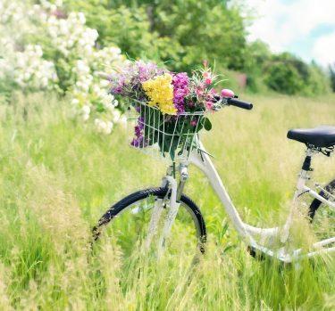 Astenia primaveral, ¿qué es?