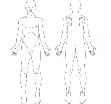 Tu cuerpo en números