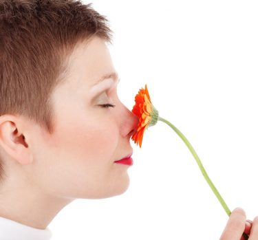 El olor y la atracción