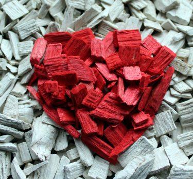 5 datos curiosos sobre el corazón